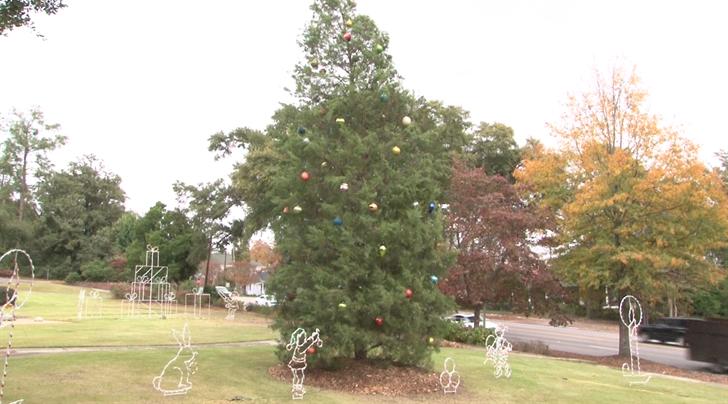 North Augusta Christmas tree (WFXG)
