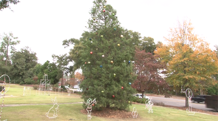 happening today north augusta christmas tree lighting wmbfnews
