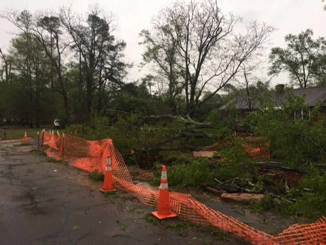 Photo of severe weather damage in Johnston. (Source: WFXG)