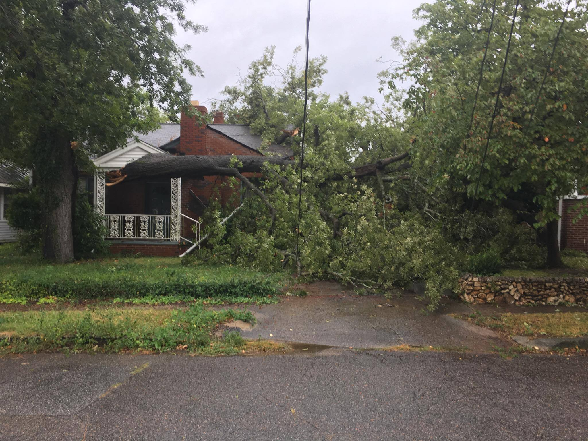 Tree down in front of a home on Woodrow St. (source: John Luther / Facebook)