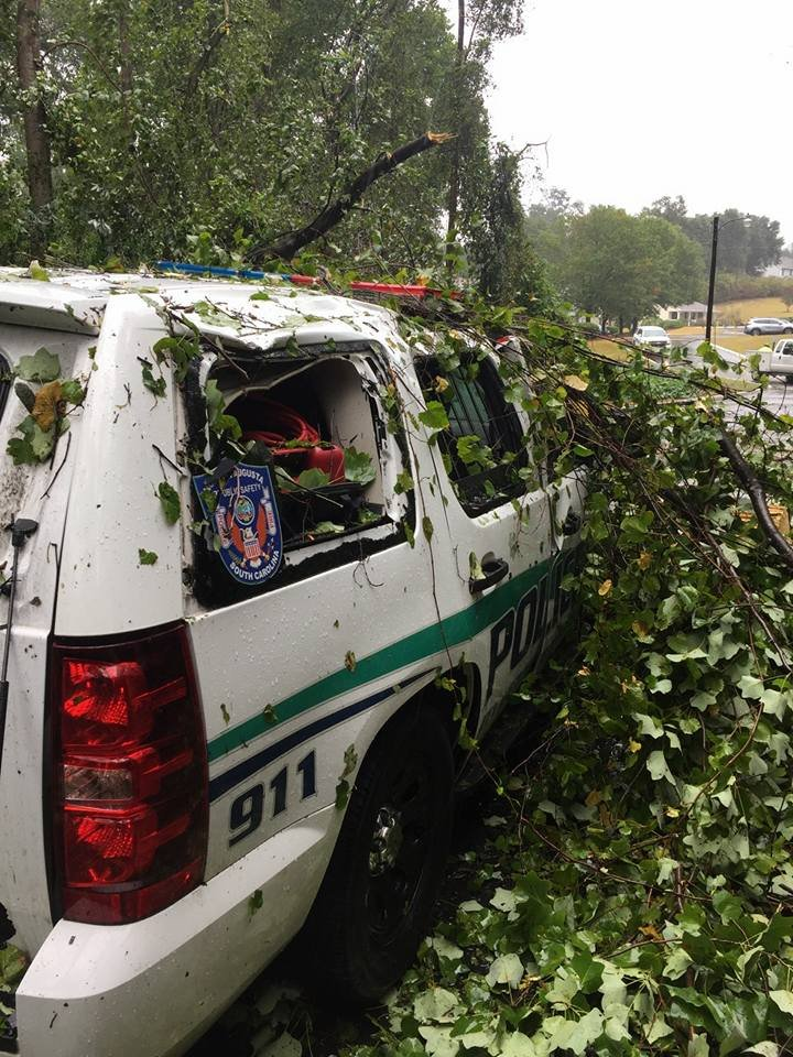 Tree on North Augusta Public Safety Vehicle (source: North Augusta Public Safety / Facebook)