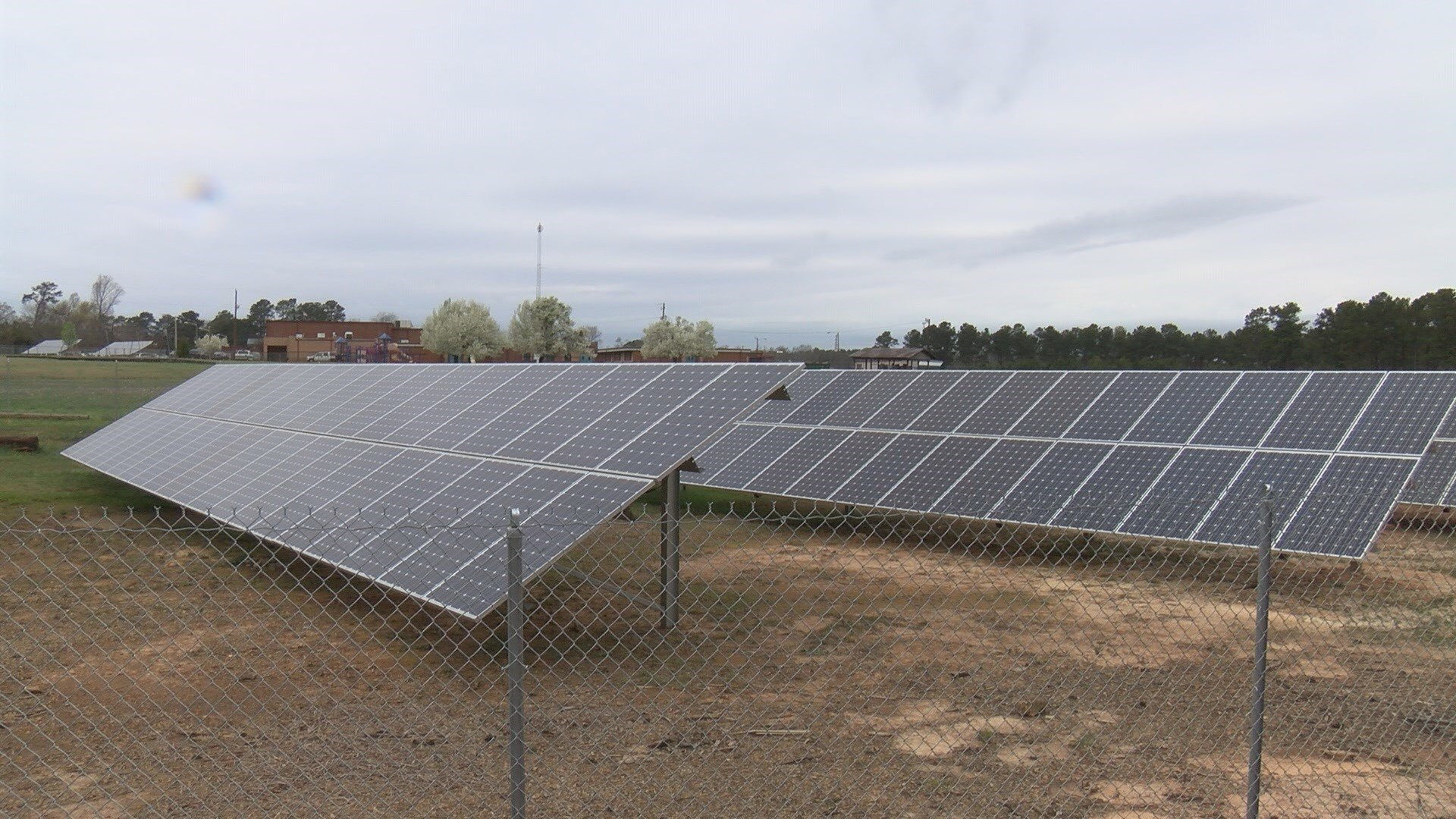 A 1600 panel solar farm generates energy on the campus of W. E. Parker Elementary in Edgefield (WFXG)