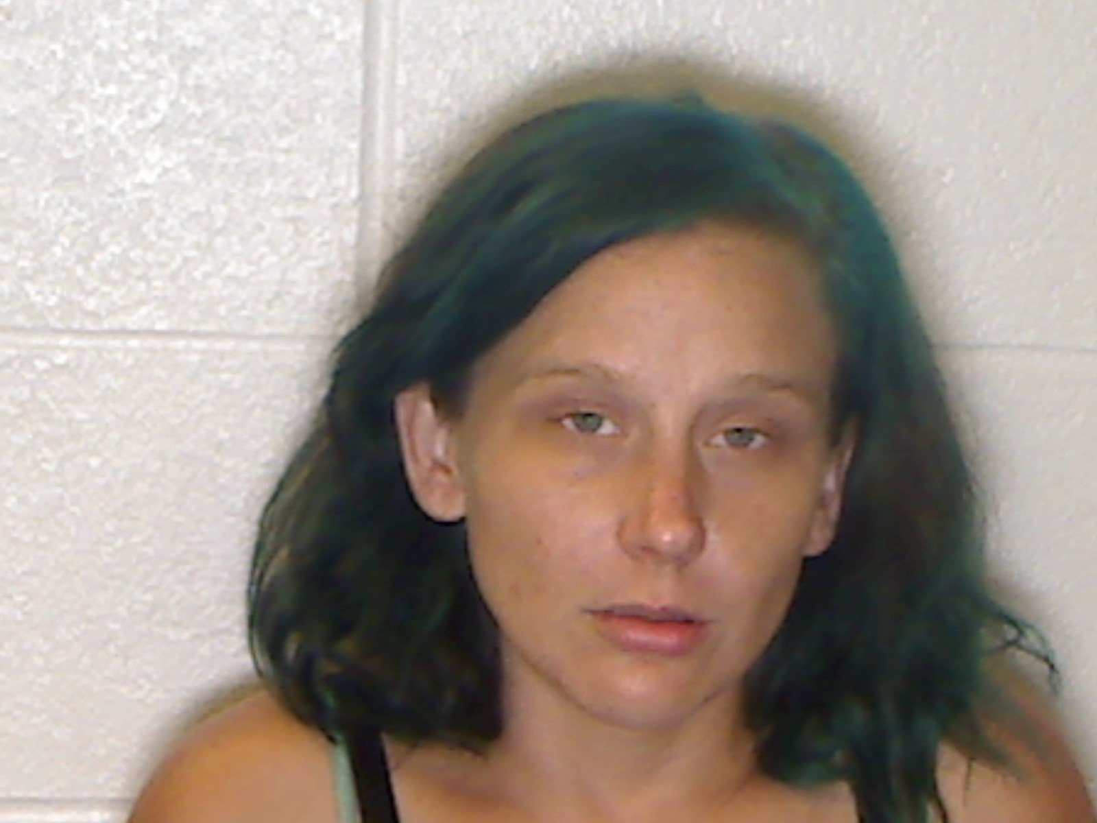 Kellie Lynn Collins (source: McDuffie County Sheriff's Office)