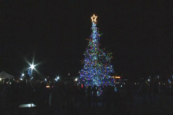 The 2012 Christmas tree at Evans Towne Center Park. (Source: File photo/WFXG)