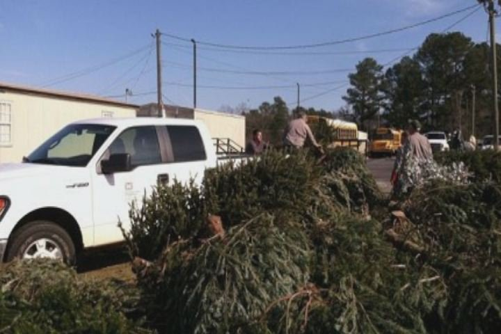 Volunteers collect used Christmas trees at Riverside Middle School during last year's tree recycling program. (Source: U.S. Army Corps of Army Engineers)