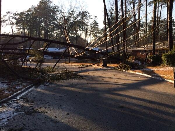 A tree fell on a power line off Boy Scout Road in Augusta. (Source: Nick Lulli)