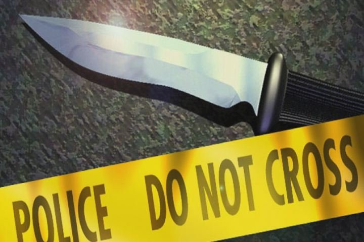 Domestic incident leads to stabbing; Source: WFXG